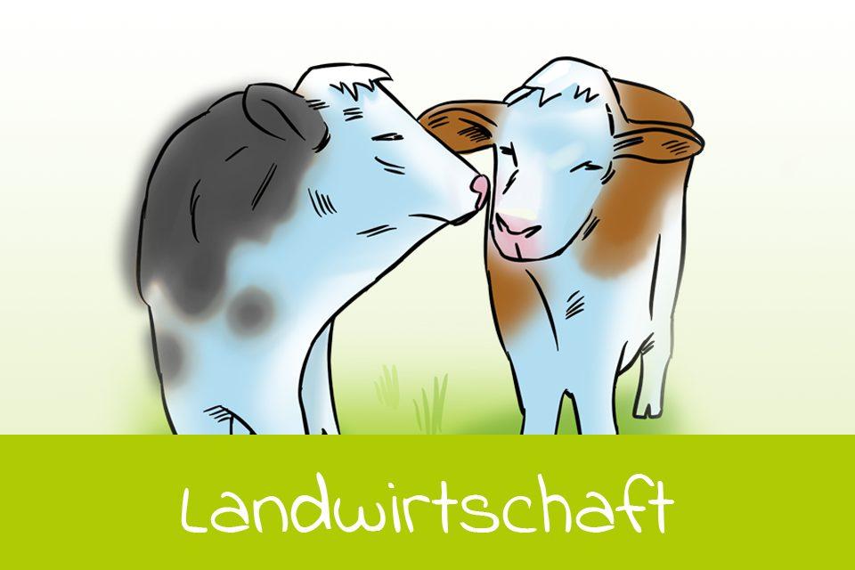 landwirtschaft_v2b